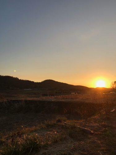 イベントのお知らせ   筑波山を守ろう   4月13日(土)