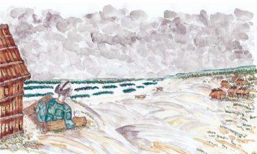 なぜ砂浜は後退するの?  –土壌の安定は地下水の動きが鍵! 第3回–