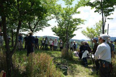 吉野山環境改善の取組が表彰されました。