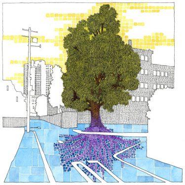 地球守の自然読本❷『街の木を守る、街の木に守られる』、7月頒布開始!
