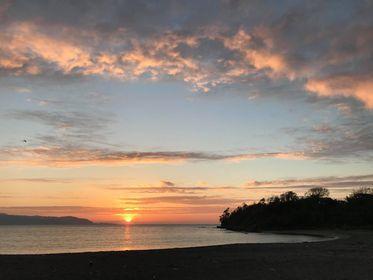 千葉県館山市講演会と沖ノ島・森の環境再生WS開催のお知らせ