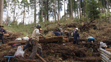 千葉市昭和の森・四季の道 森の再生作業ボランティア募集のお知らせ