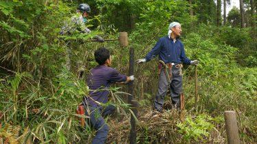 満員となりました 千葉市 昭和の森・四季の道 環境改善作業ボランティア募集のお知らせ