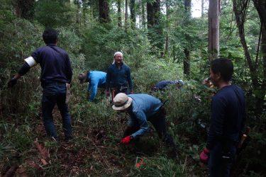 定員となりました。 千葉市・昭和の森「四季の道」 森の再生作業、ボランティア参加者を募集します。
