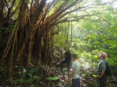 沖縄・やんばるの観光と環境を考える旅 リサーチと11月シンポジウム準備報告